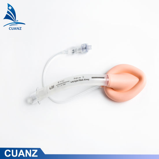 Medical Sterile Reusable PVC Laryngeal Mask Airway/Oropharyngeal Airway